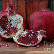 Red Pomegranate Poster