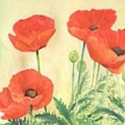 Red Poppies 3 Colorful Watercolor Poppy Floral Original Art Flowers Garden Artist K. Joann Russell Poster