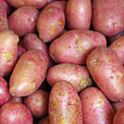 Red Potatoes Poster