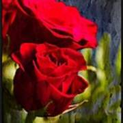 Red Rose Floral Poster