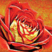 Red Rosey Poster