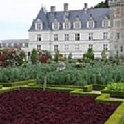 Red Salad And Cabbage Garden - Chateau Villandry Poster