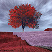 Red Tree In A Field Poster