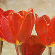 Red Tulips In Art Poster