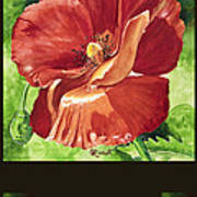 Red Vibrations Poppy Poster