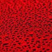 Red Water Drops On Water-repellent Surface Poster