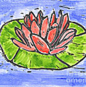 Red Waterlily Poster
