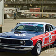 Red White And Blue Mustang Poster