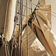 Reefing The Mainsail In Sepia Poster