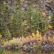 Reflect Autumn Poster
