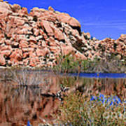 Reflections In Barker Dam By Diana Sainz Poster