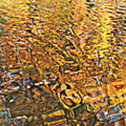 Reflections In Gold Poster