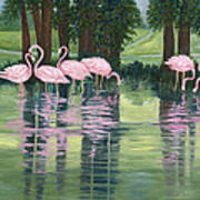 Reflections In Pink Poster