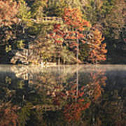 Reflections Of Fall Poster by Cindy Rubin