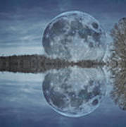 Reflective Paradise Poster