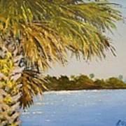Refuge Palm Poster