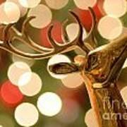 Regal Reindeer Poster