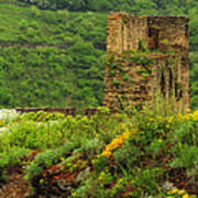 Reinfels Castle Ruins And Wildflowers In The Rhine River Valley 1 Poster