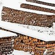 Renewable Heat Source Firewood Stacked In Winter Poster