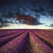 Renoir Style Digital Painting Vibrant Summer Sunset Over Lavender Field Landscape Poster