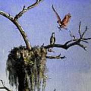 Repairing The Nest Poster