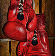 Retired Boxing Gloves Poster by Paul Ward