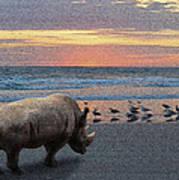 Rhino Beach Poster