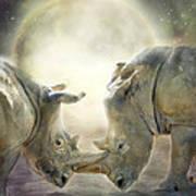 Rhino Love Poster