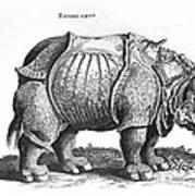 Rhinoceros No 76 From Historia Animalium By Conrad Gesner  Poster