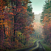 Ribbon Road Poster by William Schmid