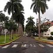 Right Side El Prado Sidewalk Poster