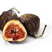 Ripe Figs Isolated Poster