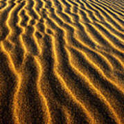 Ripples Oregon Dunes National Recreation Area Poster