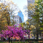 Rittenhouse Square In Springtime Poster
