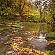 River Blyth In Autumn Vertical Poster