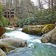 River House In Spring Poster