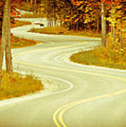 Road Bending Through The Trees Poster