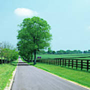 Road Passing Through Horse Farms Poster