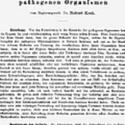 Robert Koch: Paper, 1881 Poster