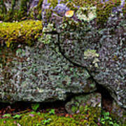 Rock Face With Moss Poster