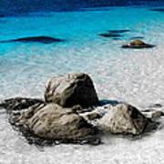 Rock Garden In Water Poster