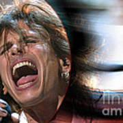 Rock N Roll Steven Tyler Poster