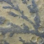 Rock Patterns On Mars Poster