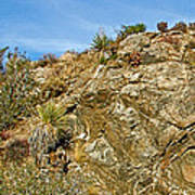 Rock Pile In Black Rock Canyon On Panorama Loop Trail In Joshua Tree National Park-california Poster