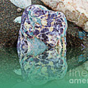 Rock Reflections - Water - Beach Poster