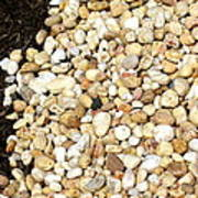 Rocks And Mulch Poster