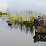 Rocks In Lake Poster
