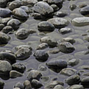 Rocks In Shallow Water Poster