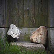Rocks Near A Wooden Fence Poster
