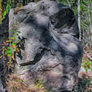 Rocky Ancestor Poster